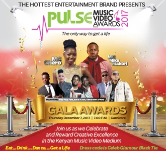 Pulse Music Video Awards