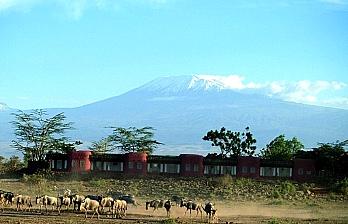 Bush Getaway to Amboseli Serena Safari Lodge