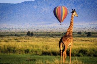 Bush Getaway to Mara Simba