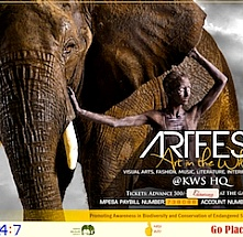ArtFest - Art in the Wild November 2017