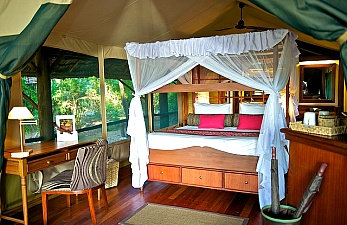 Luxury Safari to Samburu Intrepids