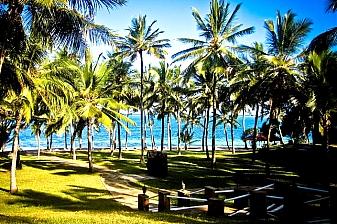 Vacation Getaway to Flamingo Pride Inn Beach Resort and Spa