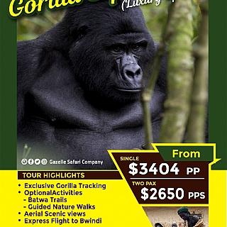 Gorilla Express (Luxery Option)