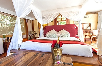 Safari Offer to Mara Leisure Lodge