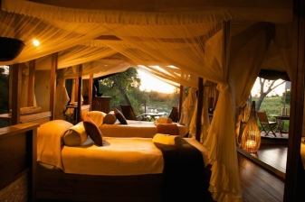 Travel Offer to Mara Intrepids Camp