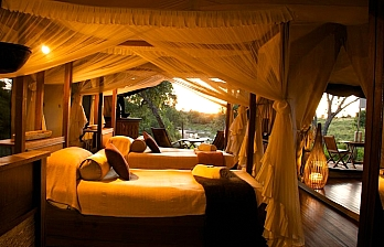 Travel Offer to Mara Intrepids Camp