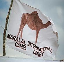 Fans of Camel Derby 2015