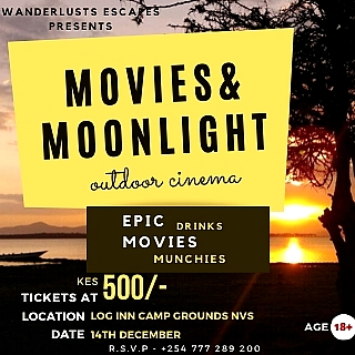 Movies & Moonlight Outdoor Cinema