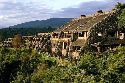 Safari Offer at Ngorongoro Serena Safari Lodge