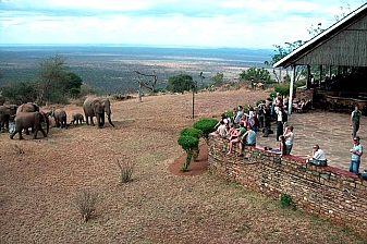 3 Days 2 Nights at Ngulia Safari Lodge