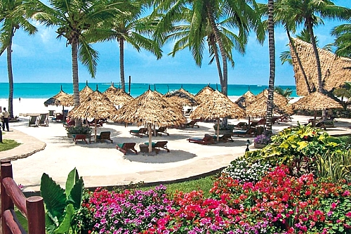 Weekend Plan to Pinewood Resort & Spa