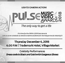 Pulse Music Video Awards 2018