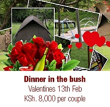 Valentines at Punda Milias Nakuru Camp