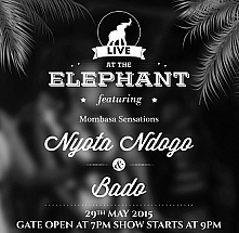Live At the Elephant 18th Edition