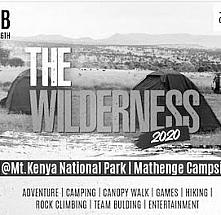 The Wilderness 2020