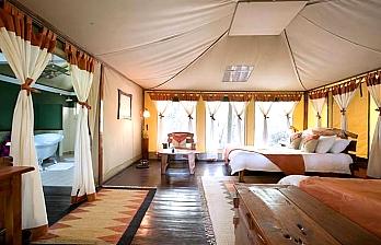 2 Nights Safari Getaway to Tipilikwani Mara