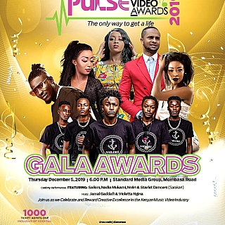 Pulse Music Video Awards 2019