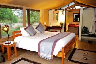 Safari Offer to Voyager Ziwani