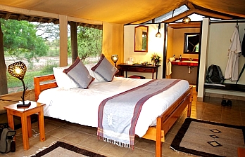 Safari Offer to Voyager Ziwani