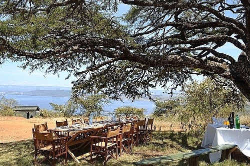 Discounted Getaway to Mbweha Camp