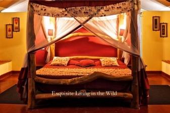 Safari Getaway to Manyatta Camp