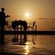 Ashnil Aruba Sunset