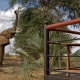 Ashnil Samburu Wildlife
